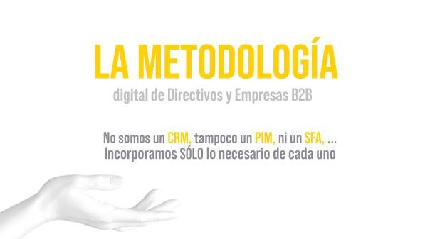 metodologia de directivos y empresas B2B